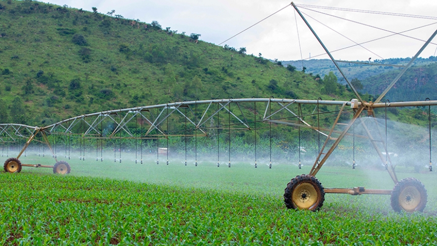 Solar Powered Irrigation System in Rwanda